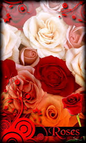 roses live wallpaper free android live