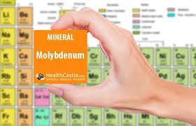 nutrition 101 molybdenum