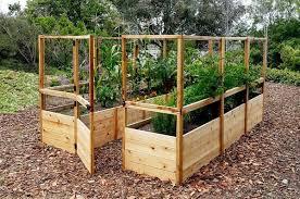 Olt Walk In 8 X12 Cedar Raised Bed Garden Kit With Deer Fencing Garden Boxes Raised Cedar Raised Garden Beds Garden Bed Kits