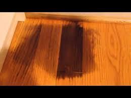 remove pet urine on hardwood floor