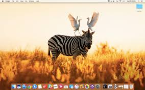 daily photo as your mac wallpaper