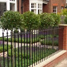 purple bedding flowers railings and