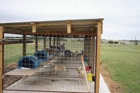 Pin On Dogs Kennel Ideas