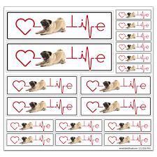 12 X 12 Vinyl Decal Sheet Pug Life
