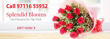 red rose delivery bangalore
