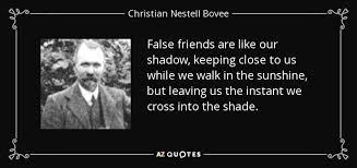 christian nestell bovee quote false friends are like our shadow