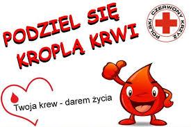 Przedświąteczny pobór krwi w Nowym Dworze Gdańskim   TvRegionalna24.pl