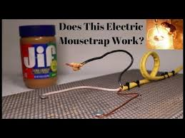 does this homemade electric mousetrap