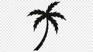 Arecaceae Sticker Wall Decal Vinyl Group Palm Tree Black Leaf Branch Png Pngegg