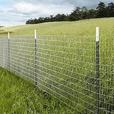 Amazon Com Mtb Galvanized Welded Wire Mesh Garden Economy Fence 48 X25 2 X3 16ga Garden Outdoor