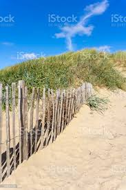 Sand Dune Wooden Fencing And Blue Sky Stock Photo Download Image Now Istock