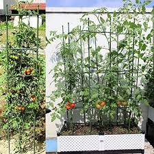 Deco2pro 3 Ft Garden Stakes Metal Plastic Coated Steel Plant Stakes Plant Cage Supports Climbing For Tomatoes Trees Cucumber Fences Beans 25 Pack Plant Cages Supports