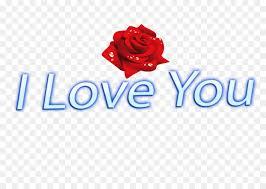 love rose flower png 1200