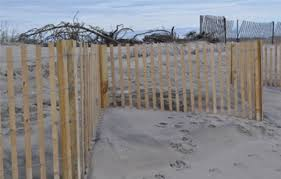 Netco Coastal Construction Services Sand Drift Fencing Using Snow Fence Photo 2 Image Proview