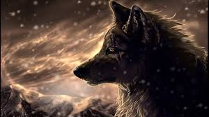 cool wolf wallpapers 31 images