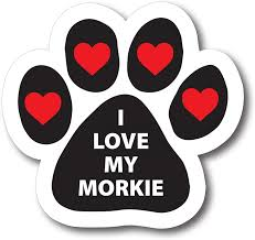 Amazon Com Magnet Me Up I Love My Morkie Pawprint Car Magnet Paw Print Auto Truck Decal Magnet Automotive