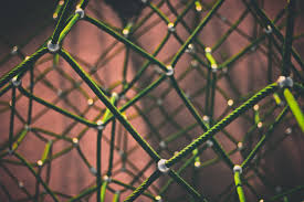 Free Images Nature Grass Branch Rope Light Fence Sunlight Leaf Flower Wire Line Green Geometric Close Up Net Macro Photography Outdoor Structure Chain Link Fencing 5184x3456 125302 Free Stock Photos Pxhere