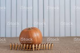 Striped Pumpkin Behind Toy Wooden Fence The Concept Of Farm Stock Photo Download Image Now Istock