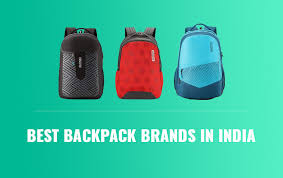best backpack brands in india 2020