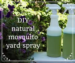 homemade organic mosquito yard spray