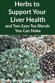 herbal tea recipes and a liver