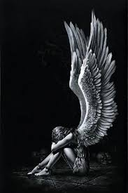 angel wing wallpaper picserio