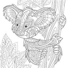 Koala Tattoo Stock Photos And Images 123rf