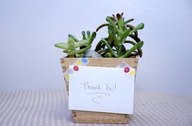 tips ideas for giving plants as gifts
