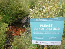 Innovative Use Of Snow Fencing Protecting Spawning Salmon And Trout Trans Mountain