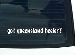 Euro Australian Shepherd Aussie Graphic Decal Sticker Car Oval Not Two Colors