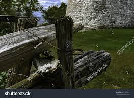 Old Weathered Cedar Fence End Posts Stock Photo Edit Now 741785701