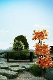 zen garden zen garden design garden