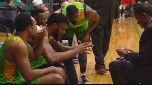 Albany Patroons set for another season