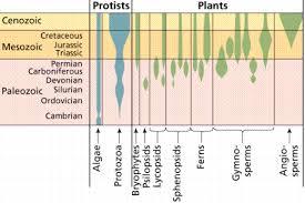 biological diversity 6