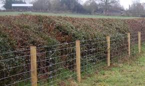 Farm Livestock Fencing Installation Gate Viking Fence Of Atlanta