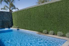 Pool Side Green Oasis And Privacy Screening With Fake Boxwood Panels Designer Plants