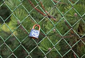 Free Images Grass Bird Leaf Flower Steel Green Metal Fencing Safety Gateway The Fence Hurdle By Wlodek 5282x3571 810660 Free Stock Photos Pxhere