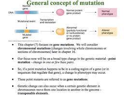 dna mutation flashcards quizlet