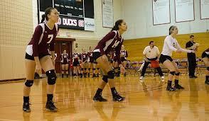 Ashley Castillo - 2014 - Women's Volleyball - Stevens Institute of  Technology Athletics