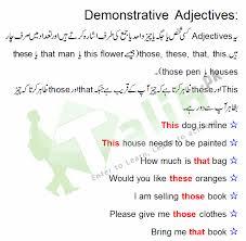 demonstrative adjective in sentences