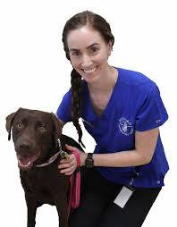 Sanford Veterinary Clinic Geraldton - Sanford Veterinary Clinic ...