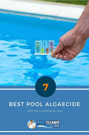 top 7 best pool algaecide in 2020 reviews