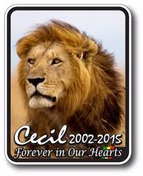 Free Cecil The Lion Memorial Decal Sticker Animal Rights Peta Zimbabwe Other Car Items Listia Com Auctions For Free Stuff