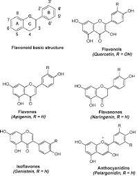 phenolic acids and flavonoids in honey