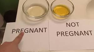 bleach pregnancy test at home 2019