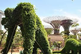 Gardens By The Bay Singapore Provided By Sal Holidays Tripadvisor