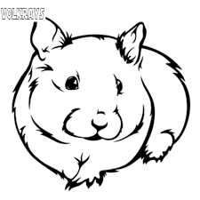 Volkrays Lovely Car Sticker Guinea Pig Pet Hamster Rodent Mouse Rat Accessories Reflective Vinyl Decal Black Silver 12cm 13cm Car Stickers Aliexpress