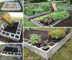 raised bed garden out of cinder blocks