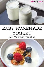 recipe how to make homemade yogurt for