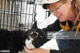 Longmont Humane Society Staff member Janine West, of Longmont, shows...  News Photo - Getty Images